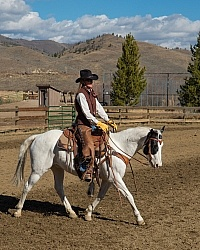 Western Equitation