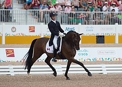 Chris Von Martels  and Zilverstar, Dressage, Pan Am Games Toront