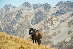 Mountain Views in Auriri Conservation Area, Wild Women Expeditio Riding in Ahuriri Conservations Area with Wild Women Expeditions and Adventure Horse Trekking New Zealand