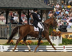 Ashley Holzer and Pop Art perform at the 2010 Alltech World Equestrian Games
