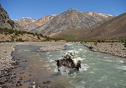River Crossing on the Crossing of the Andes Ride