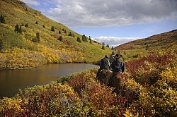 On the Trail - Yukon Pack Trip