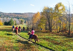 Vermont Icelandic Horse Farm Fall Colours Ride
