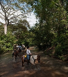 River Ride near Maravilla