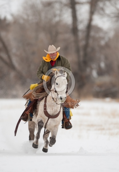 Qarter Horse Ridden in Winter