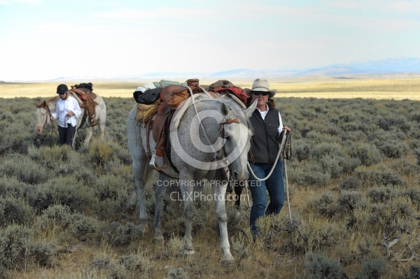 The Ride To the Wild horses with Blue Sky Sage