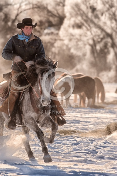 Winter Cowboys