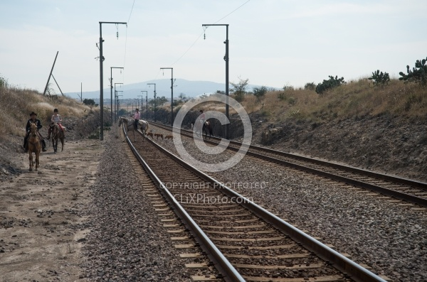 Crossing the Tracks in Mexico